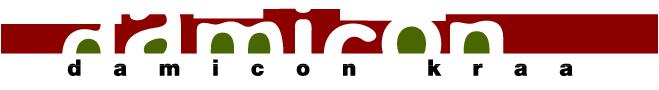 damicon-logo-valkoinen-tausta